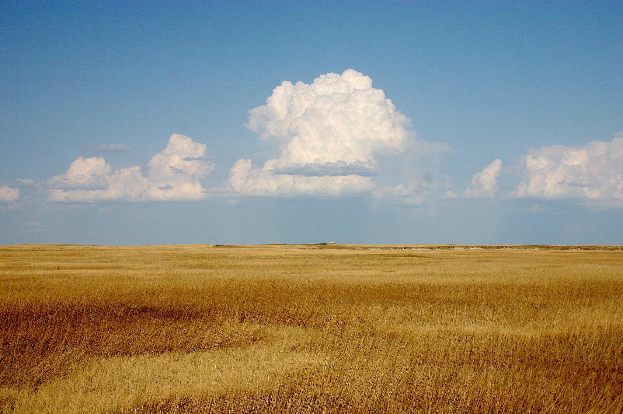 Cumulus_Clouds_over_Yellow_Prairie2