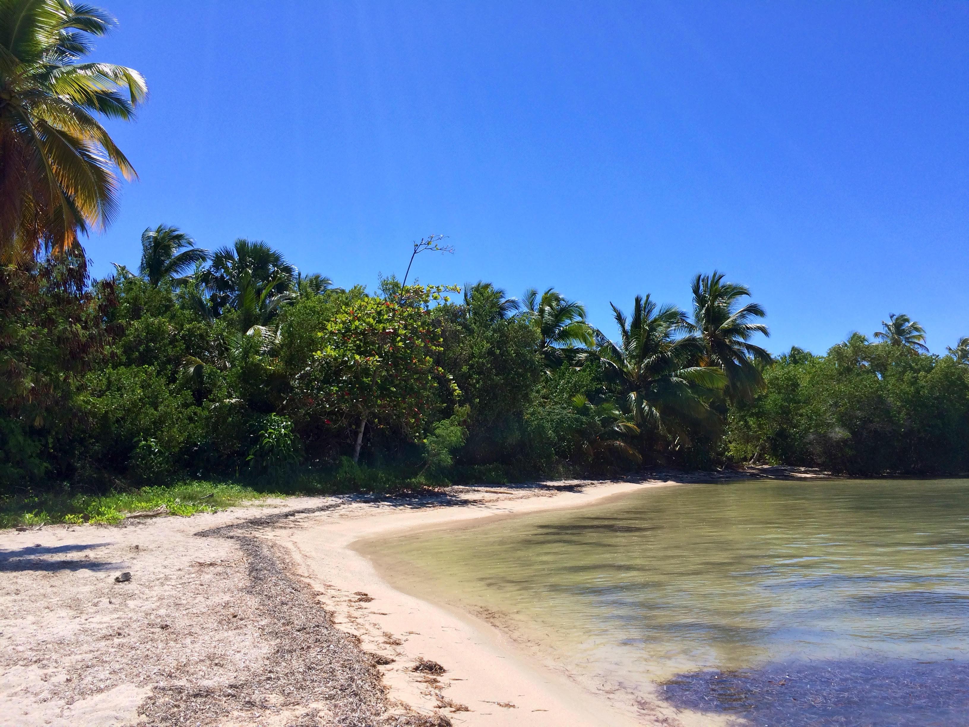 Punta_Cana_Rep_Dominicaine