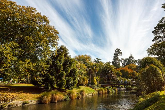Img3_Aidan_Christchurch botanic gardens