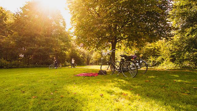 Amsterdam - Claudia Regina