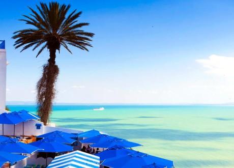 Comment organiser son voyage sur  mesure en Tunisie