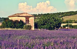 Provence_Likibu