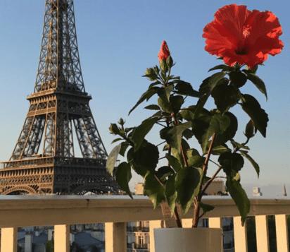 Airbnb avec vue Tour Eiffel à Paris