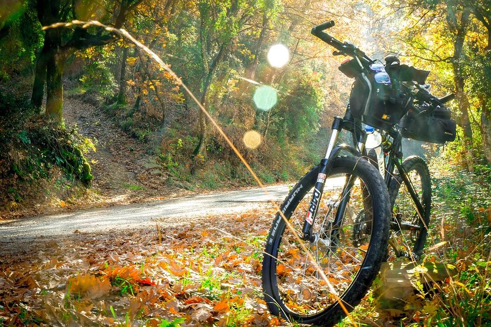 cycling-2846201_960_720