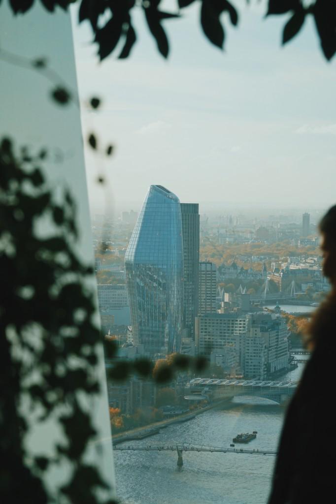View from the Sky Garden  - © Reuben Rohard